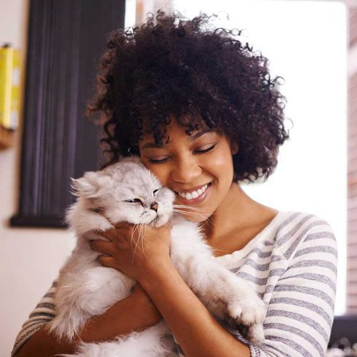 Pet Adoption: How To and What For?